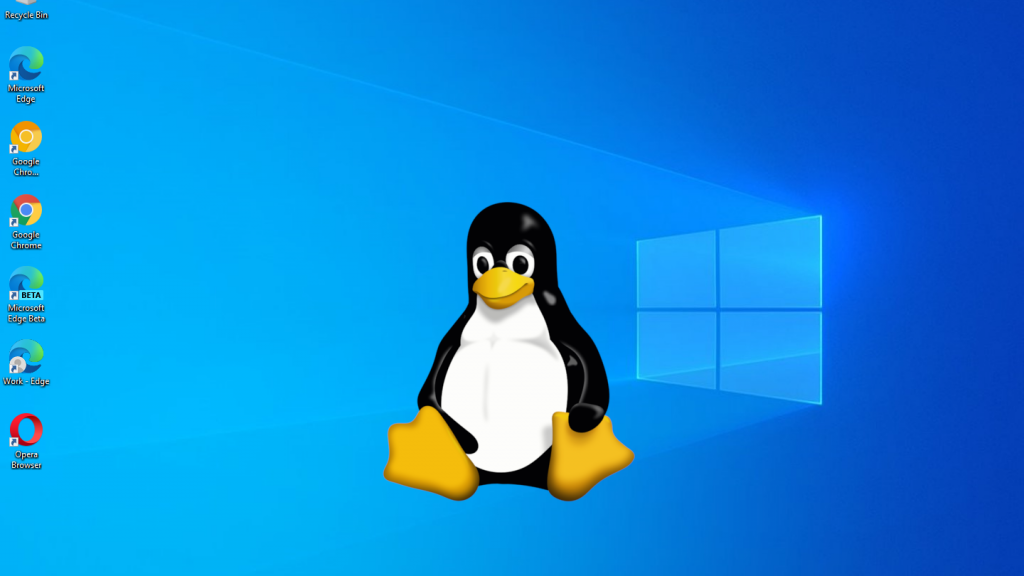 Install MS Excel On Linux
